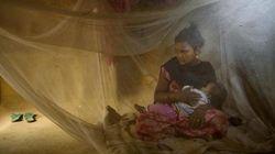ネパール:児童婚で脅かされる少女たちの未来