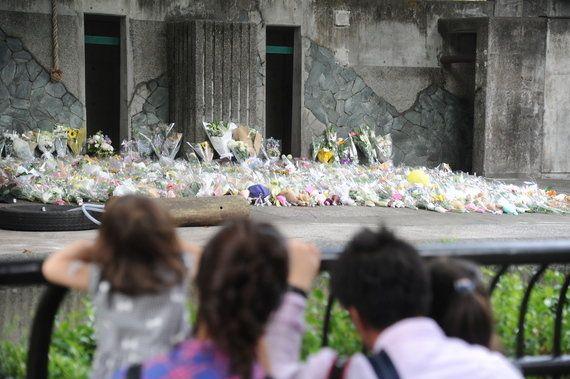 アジアゾウ「はな子」の死から1年、絶えない献花 銅像やナンバープレートにする取り組みも
