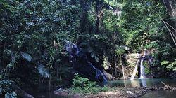 小さな水力発電機がつなぐ スマトラの森とその未来