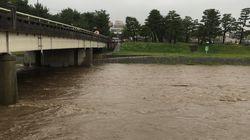 京都の鴨川にオオサンショウウオ。大雨による増水で流されてきたか(動画)