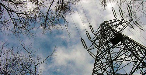 WWFが声明:九州電力管内での自然エネルギー大幅導入は可能
