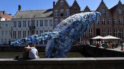海を漂流するプラごみ製のクジラのオブジェ。その中に日本からのごみもあった【動画】