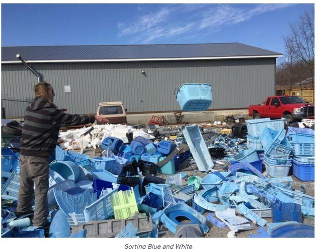 集めたプラスチックごみを青と白に仕分ける=Studio
