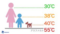 子供やペットの体感温度はこんなに違う?