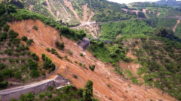 無残にも農道は崩落し、ミカンの木々もなぎ倒されていた。