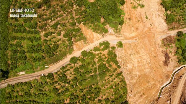 ミカンの木々がかろうじて残った畑も、下地の土砂が流出し、茶色くなっていた。
