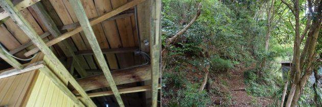 屋根や裏山への道など、安全に使うには整備が必要だ