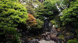 日本が危機を乗り切るカギは「外と内、未来と伝統の新しいバランス」