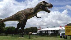 ティラノサウルスか?