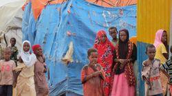 オランダで暮らすソマリア難民に忍び寄る危機
