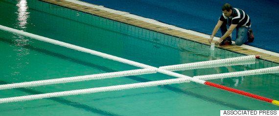 隣のプールまで緑色に...
