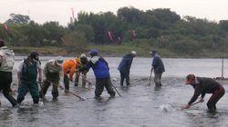 高知にある「奇跡の清流」を守る。荒廃した流域を蘇らせた市民たち