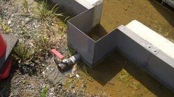 『汚染水漏れ』審議、オリンピックの東京招致への影響が理由で先送りへ