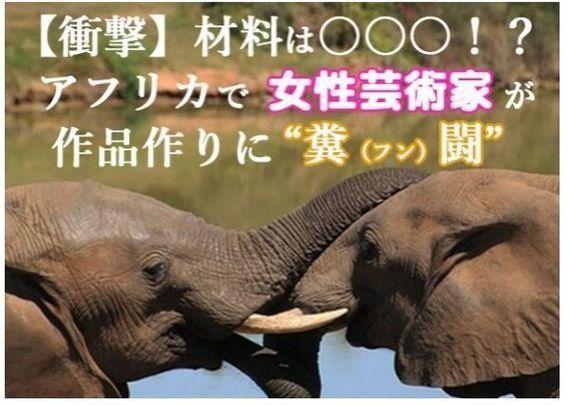 象の絶滅危機訴える「うんこペーパー」、元動物園職員がフン闘