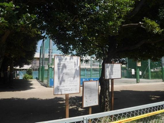 公園の代わりの場所が、公園の代わりになっていない。〜杉並区の保育園問題(1)〜