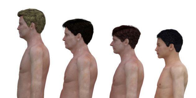 30代男性の「体型」をCGで再現 日本は欧米より「おなかの出っ張り」が少ない?