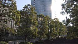 私立大学という日本の痼疾