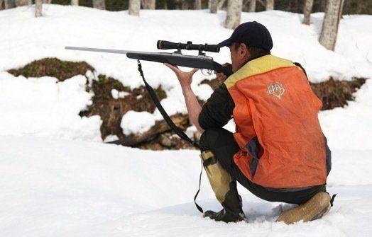 この冬もオオワシたちは苦しまなければならないの?