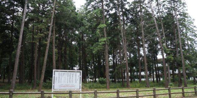 小平市「住民投票」の公開求める訴訟を弁護士も支援