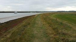 海水準上昇が沿岸湿地に及ぼす影響