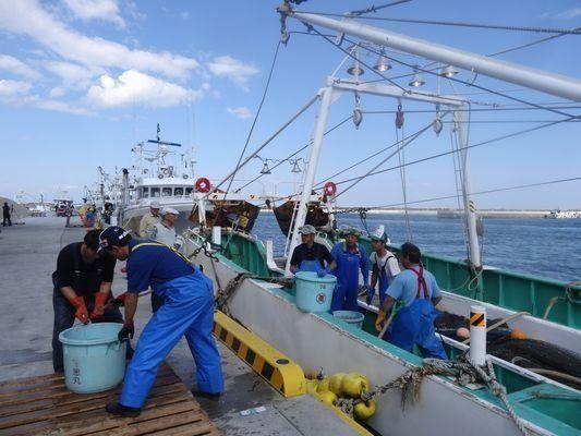 「福島県知事選」に声は届くか――山も海も「難題山積」の被災地