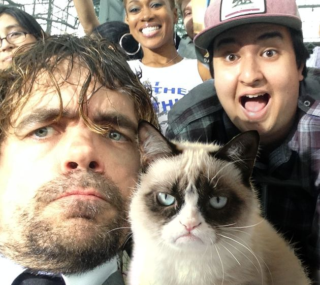 不機嫌そうな猫の顔が、アメリカ人気ドラマの俳優とそっくり(画像)