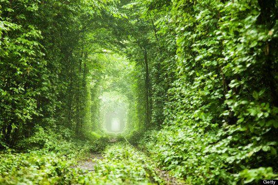 世界の魅力的なトンネル11選