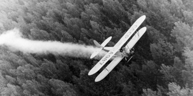 A polikarpov po-2 (u-2) biplane spraying pesticides over forests, late 1940s. (Photo by: Sovfoto/UIG...