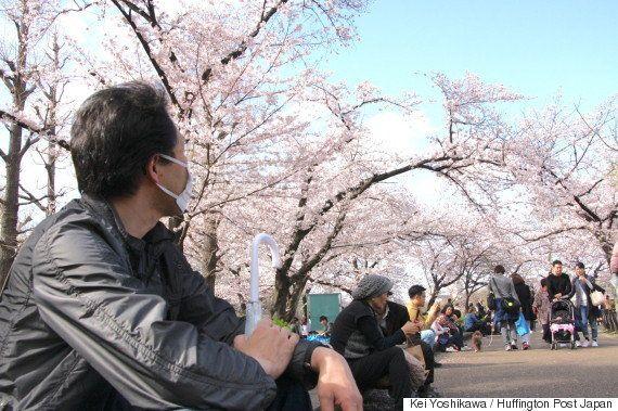 「ひとり花見」を楽しむ人の割合が増えていることが調査で判明 「思い立った時、自分本位に」