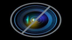 ミス・ユニバースの宮本エリアナさん問題 日本の「ハーフ」差別に外国メディアが批判