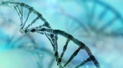 有病率と発生率の違い-リスクの評価には、どちらの率を用いるべきか?:研究員の眼