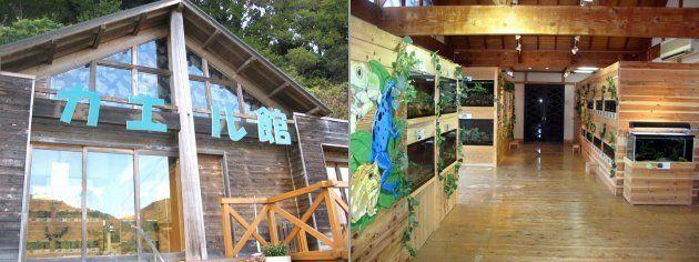 カエル館の外観(写真左)と館内の展示スペース=あわしまマリンパーク