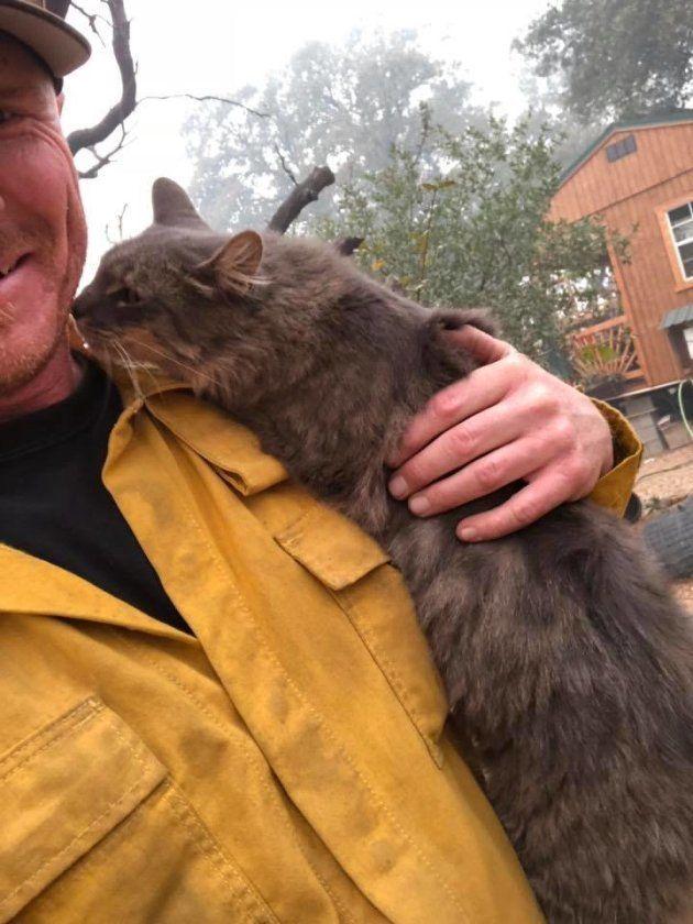 ライアンさんに寄り添う猫さん