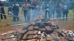 ジャカルタ警察が大麻を野焼き 煙が飛んでみんながハイに......