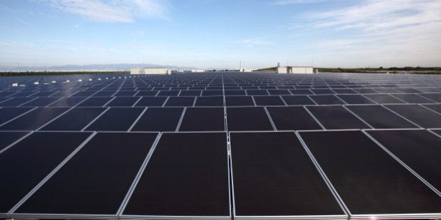 Solar panels manufactured by Sharp Corp. stand at Kansai Electric Power Co.'s mega solar power station...