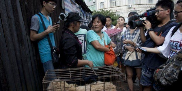 This picture taken on June 20, 2015 shows animal-loving Yang Xiaoyun (C) going around buying some 100...