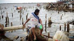 フィリピンの復興を阻むかつての「独裁者」の影