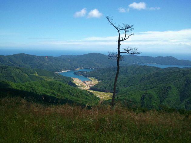 モリウミアス。豊かな森と海をフィールドにこども達の未来を