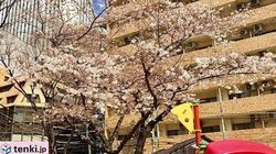 4月1日(土)の天気 全国的に変わりやすく、真冬並みの寒さの地域も