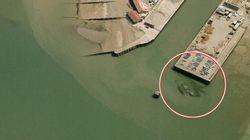 超巨大ガニ「クラブジラ」がイギリスの海に出現! その正体は...?(画像)
