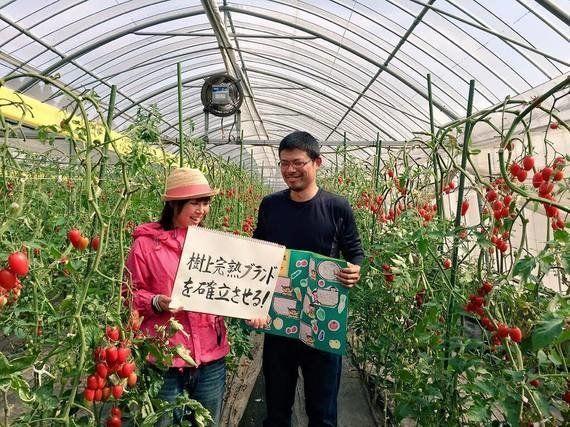 今一番知りたい『6次産業化』成功の秘訣 生産から小売まで一気通貫 農業小町が「樹上完熟トマト」で挑む