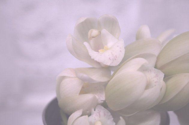 石橋雅史さん、心不全で死去。85歳、『水戸黄門』などの名悪役
