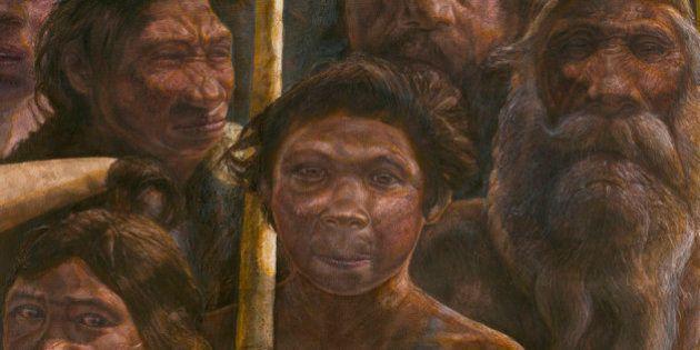 人類最古のDNAを解読 人類の歴史に「新たなミステリー」が