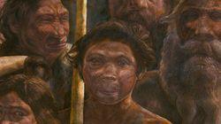 人類最古のDNAを解読 人類の歴史に「新たなミステリー」