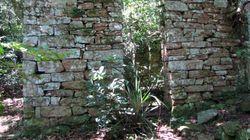 ナチスの隠れ家? アルゼンチンのジャングルで発見された廃墟には何が残されていたのか