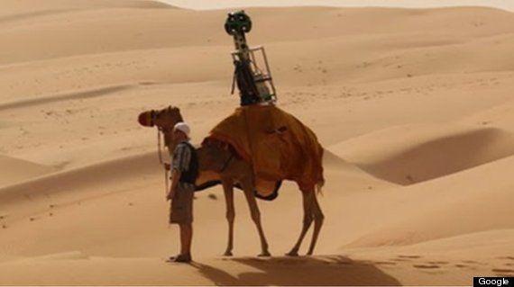 Google、ラクダを使って撮影した砂漠のストリートビューを公開