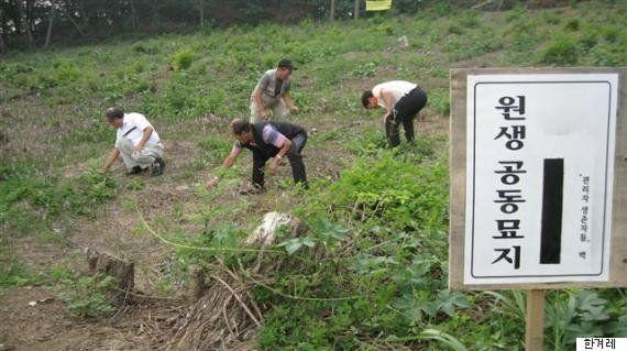 親と引き離され「浮浪児」保護施設に送られた韓国の子供たち。翻弄された人生
