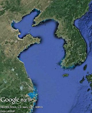 黄海の保全成果を政策決定の場へ