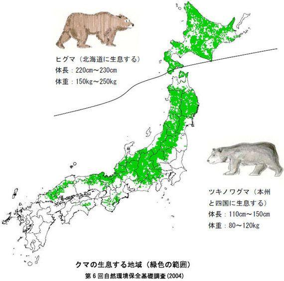 2014年秋、クマの大量出没の予測(WWFジャパンまとめ)