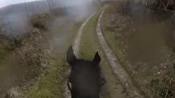 往年の競走馬に乗ってみたら、本気出しすぎてマジ怖かった(動画)